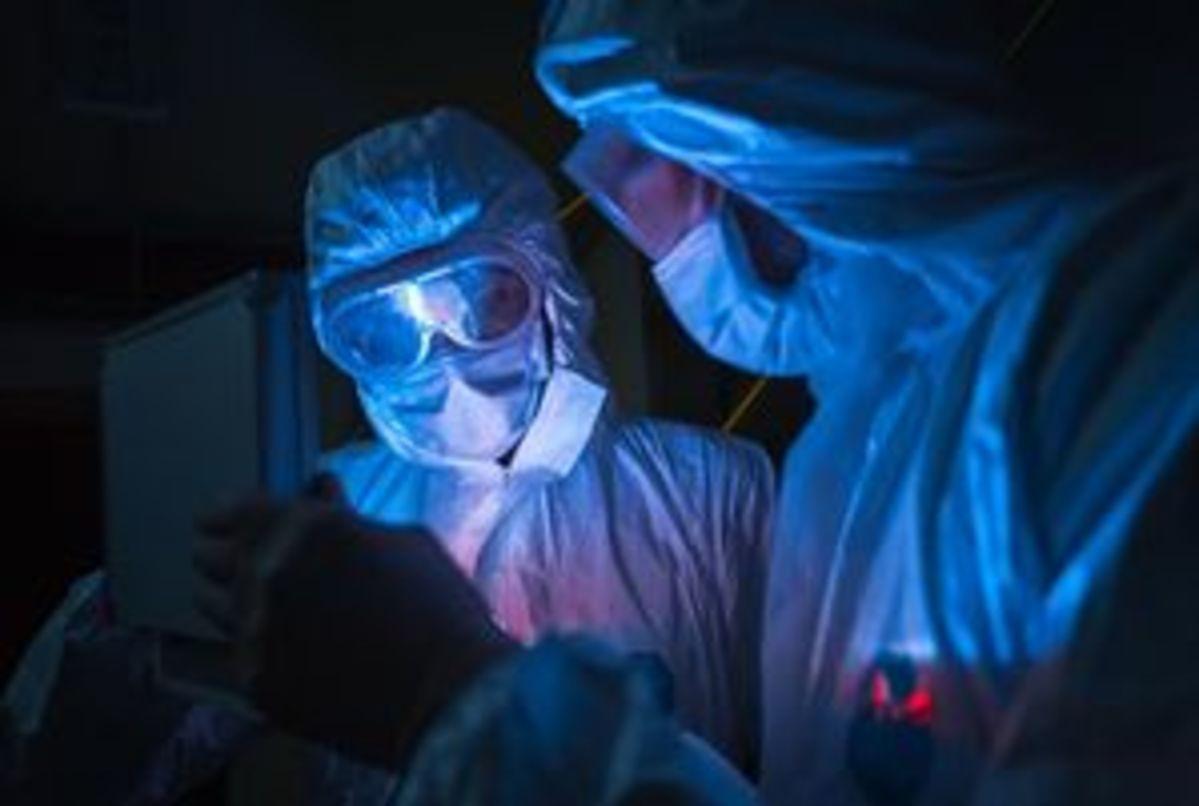 Epidemiya epidemiya photo1
